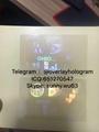 Ohio state ID overlay OH hologram