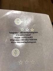 TX DL hologram sticker OVI Teax Sticker overlay