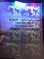 New North Carolina ID UV laminate sheet