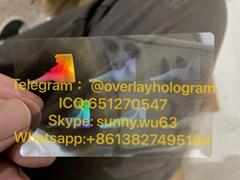 new idaho ID hologram ID state driver license card