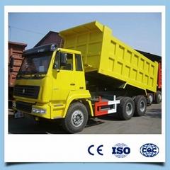 China 10 wheel 6x4 dump truck for sale