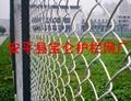 體育場圍欄網