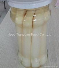 白芦笋罐头370ml/16cm