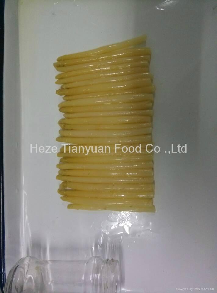 白蘆筍罐頭370ml/16cm 3