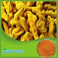 Pure Natural Curcumin95%