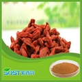 Factory supply extract powder natural Chinese Wolfberry Extract 1
