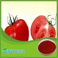 Plant extract 5% tomato extract powder