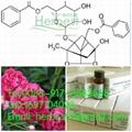Benzoylpaeoniflorin HPLC>98% 38642-49-8