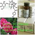 Oxypaeoniflorin  98% by HPLC+MS+NMR