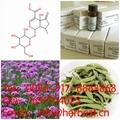 Hastatoside 50816-24-5
