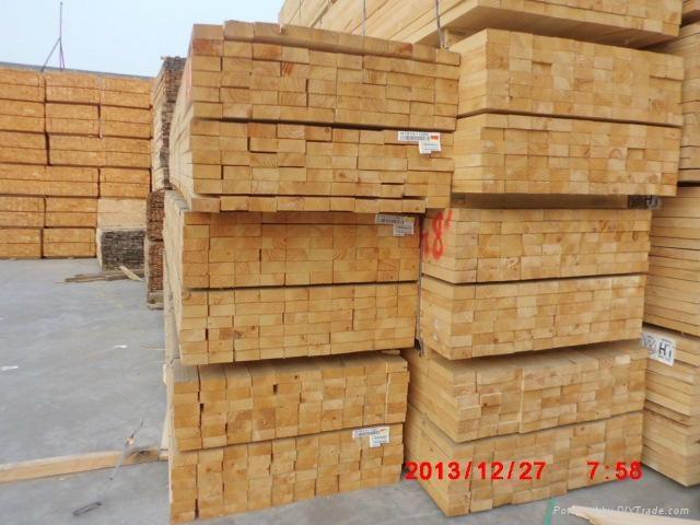 进口建筑木方 2