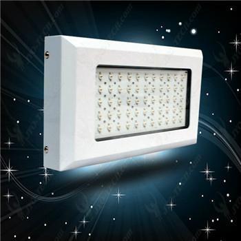 LED grow light 3
