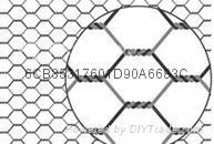 hexagonal wire  netting 2