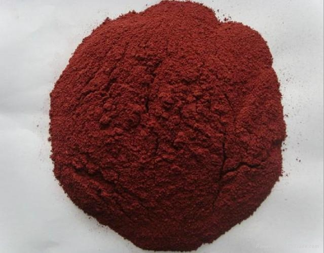 red yeast rice powder colorant nature color 4