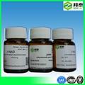 Nad Nicotinamide Adenine Dinucleotide