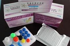 Chloramphenicol (CAP) ELISA test Kit