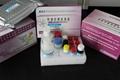 Furazolidone (AOZ) ELISA test kit 1