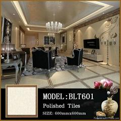 GZ Lida photos porcelain floor and tiles brand name marble 60x60 polished glazed
