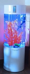 小型亚克力圆柱形鱼缸