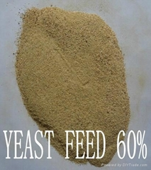 yeast powder 60%