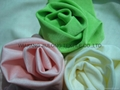 SGS Bright Nylon/ Spandex Fabric 2