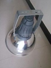 250W钠灯防水防尘防震投光灯