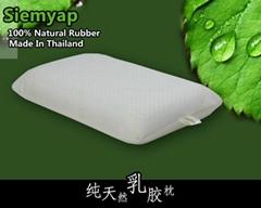 泰國進口乳膠枕頭