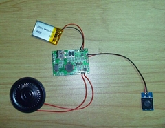 Programmable MP3 Greeting Card Sound Module