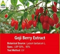 Goji Berry Extract LBP50%