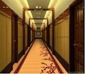 酒店走廊地毯 5