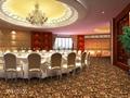 酒店地毯 3