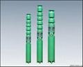 QJ系列多级深井泵 2