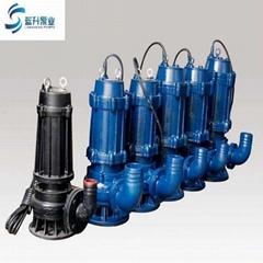 供应100WQ85-20-7.5潜污泵 自耦式轨道潜水排污泵