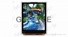 1.77 inch TFT LCD with 128 RGB x 160P Resolution and LED Backlight