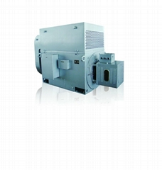 YR series high voltage three-phase induction motor