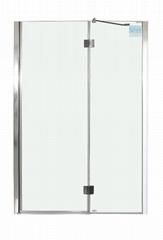 SY36301 Pivot shower Door 2 Parts 8mm