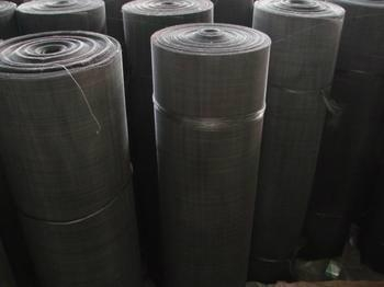 Black wire cloth or Black wire mesh 3