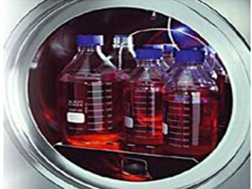 德国Systec DE-45高压灭菌器 3