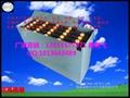 合力杭州叉堆高车林德叉车电池 3