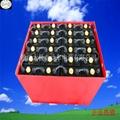林德E16叉车电池 4