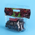 High Quality Customize Printing Plastic Grape Bags Stand up Zip Pouch 3