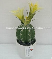 2014 high nature potted artificial plants & succulent & cactus with flowers