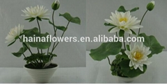 Wholesale real touch silk flower artificial lotus with melamine pot