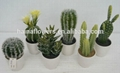high quality potted artificial plants &
