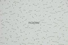 Acoustic mineral fiber ceiling boards