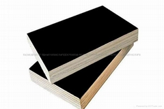 Film faced construction plywood