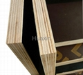 BLACK FILM FACED CONSTRUCTION PLYWOOD