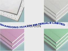 Gypsum board for wall partition