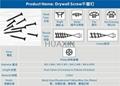 Drywall self-tapping screw for gypsum board