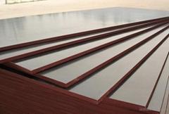 建築木模板